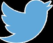 Twitter Ads import to Google Sheet Addon